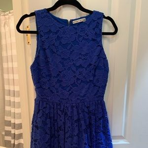Alice & Olivia Blue Lace Dress